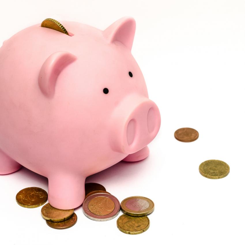Money Jar Pig